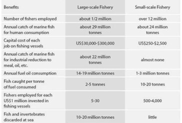 Big Box Fisheries & Misplaced Priorities
