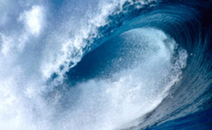 Healthy Oceans?