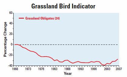 Grassland Bird Decline
