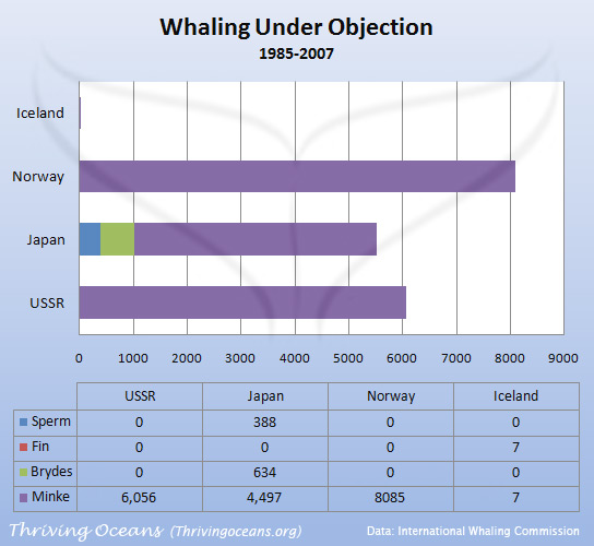 whaling_objections