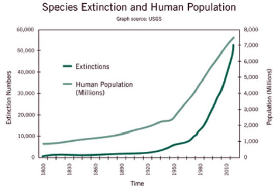 Are We Ready to Head Off the Extinction Trend?
