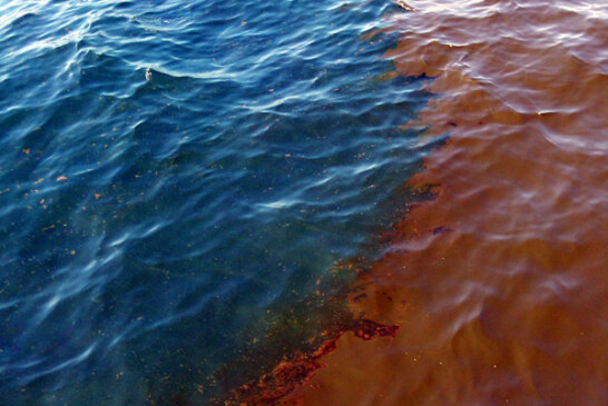 Gulf Oil Spill- Oil and water don't mix