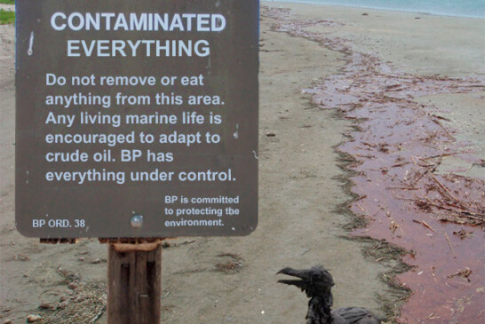Warning: BP has everything under control