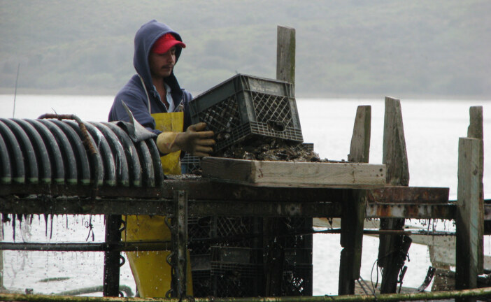 National Park Service Announces Settlement Agreement with Drakes Bay Oyster Company