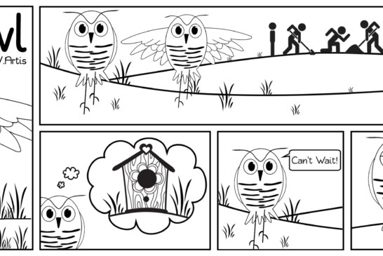 Billy Owl: Life as a burrowing owl #3